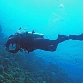 dive-008-010