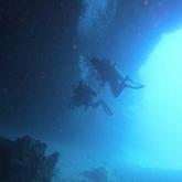 dive-020-041